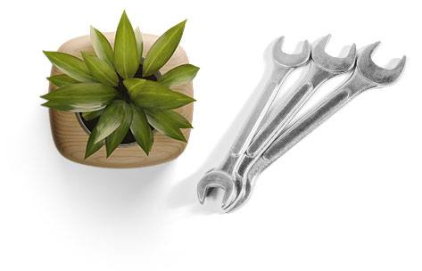 Plant and Wrenches